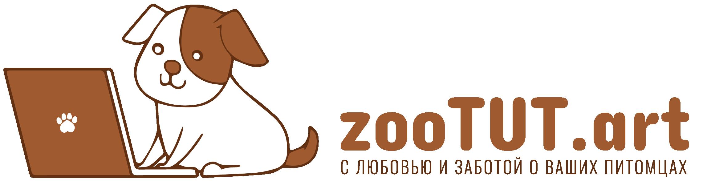 zootut.art